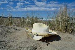 Oude hoed in het zand Royalty-vrije Stock Afbeelding
