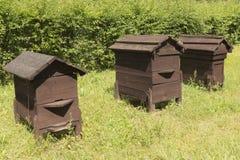 Oude houten bijenkorven Royalty-vrije Stock Afbeeldingen