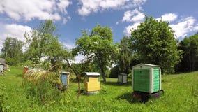 Oude houten bijenkorven in de tuin en de wolken van het de zomerlandbouwbedrijf Timelapse 4K stock video