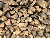 Oude houten boomstam Achtergrond en ringen van hout stock foto