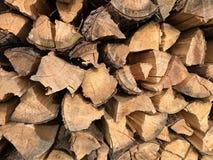 Oude houten boomstam Achtergrond en ringen van hout stock foto's
