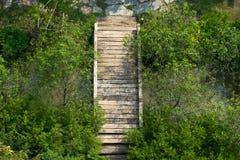Oude houten brug onder aard op hoogste mening Stock Afbeelding