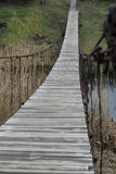 Oude houten brug over de rivier en het riet, groene aard Stock Foto