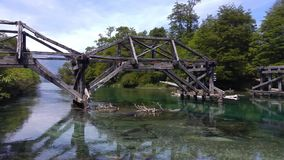 Oude houten brug over groene kristalrivier in bos dichtbij Bariloche, Argentinië stock videobeelden
