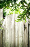 Oude houten deur in de tuin De zomerachtergrond Royalty-vrije Stock Afbeelding