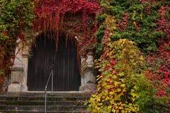 Oude houten deur die door kleurrijke dalingsbladeren wordt omringd Royalty-vrije Stock Foto