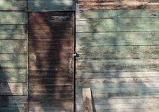 Oude houten deur en groene muur Stock Fotografie