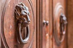 Oude houten deur met leeuwhandvat Italië stock afbeeldingen