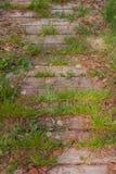 Oude houten die gang met groen gras wordt overwoekerd Royalty-vrije Stock Foto's