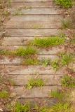 Oude houten die gang met groen gras wordt overwoekerd Royalty-vrije Stock Afbeelding