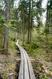 Oude houten die promenade met bladeren in oud bos wordt behandeld Stock Foto