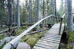 Oude houten die promenade met bladeren in oud bos wordt behandeld Royalty-vrije Stock Foto