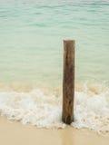 Oude houten die staven in het zandstrand worden geplant Stock Fotografie