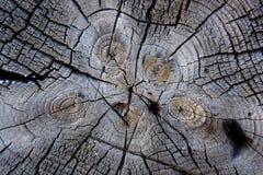 Oude houten geweven achtergrond Stock Foto's