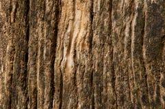Oude houten geweven schors Stock Fotografie