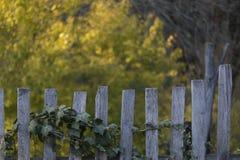 Oude houten landelijke omheining in het dorp, natuurlijke vage achtergrond van gele bomen stock fotografie