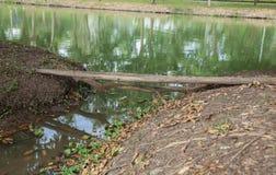 Oude houten logboekbrug over rivier Stock Fotografie