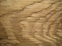 Oude houten muur. Stock Afbeeldingen