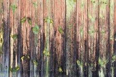 Oude houten omheining, muurachtergrond royalty-vrije stock foto