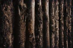 Oude houten omheiningstextuur stock afbeeldingen