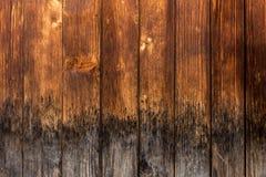 Oude houten paneeltextuur Stock Foto