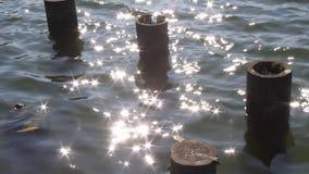 Oude houten pijlers en glimmers van zon in water stock videobeelden