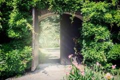 Oude houten poort met lianas Stock Afbeelding