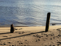 Oude houten stapels op zandig rivierstrand royalty-vrije stock afbeeldingen
