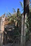 Oude houten stapels van oude geruïneerde pijler uit het water stock foto's