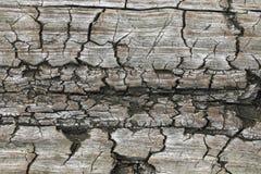 Oude houten texturen voor Webachtergrond Textuur stock fotografie