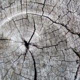Oude houten textuur/achtergrond Stock Afbeeldingen