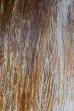 Oude Houten Textuur Houten de textuurachtergrond van de plankmuur royalty-vrije stock afbeelding