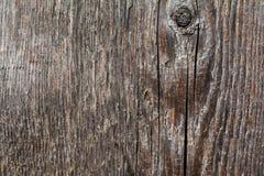 Oude houten textuur macromening Stock Fotografie