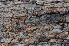 Oude houten textuur voor Webachtergrond Stock Afbeelding