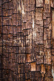 Oude Houten textuurachtergrond Royalty-vrije Stock Afbeelding