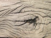 Oude houten van nature gemaakte textuur Droge houten raad stock fotografie