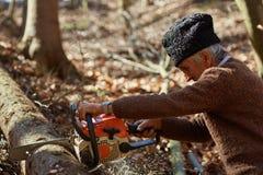 Oude houthakker aan het werk met kettingzaag Royalty-vrije Stock Foto's