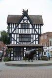 Oude Huis en de Stier van de Hereford het Hoge Stad Stock Afbeeldingen