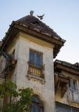 Oude huis en duif die over het dak vliegen Stock Afbeeldingen