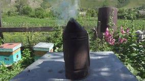Oude imker rokende pot die zich op de bijenkorven bevinden stock videobeelden