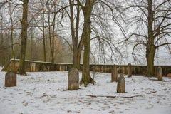 Oude Joodse begraafplaats in de winter, Tsjechische republiek stock afbeeldingen