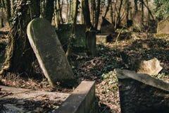 Oude Joodse begraafplaats royalty-vrije stock fotografie