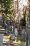 Oude Joodse begraafplaats met doorstane grafstenen, Duitsland royalty-vrije stock foto