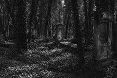 Oude Joodse begraafplaats royalty-vrije stock afbeeldingen