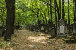 Oude Joodse Cementary Stock Afbeeldingen