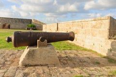 Oude Kanonnen op Acremuren stock foto's