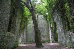 Oude kerkruïne die door een heks wordt achtervolgd Stock Foto's