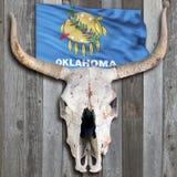 Oude Koeschedel met de Vlag van Oklahoma Stock Afbeelding