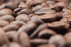 Oude koffieboon Stock Afbeelding