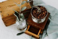Oude koffiemolen, koffiebonen en olijftak stock afbeelding